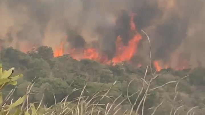 Wildfire continues to rage in Australia