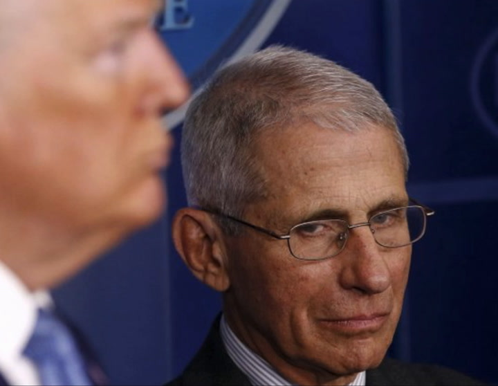 Fauci: Coronavirus 'Allowed' to Perpetuate in U.S. Because Only '50 Percent of the Country Locked Down'