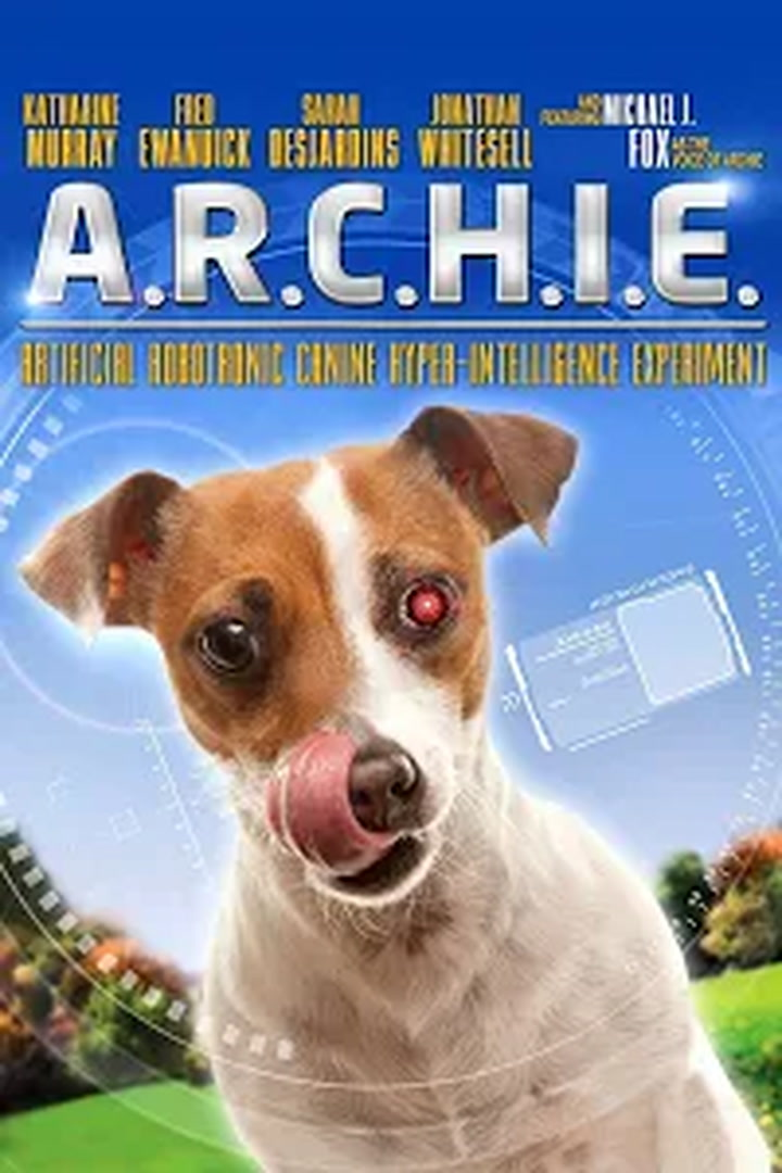 Replay Archie :  robot chien - Mercredi 13 Octobre 2021
