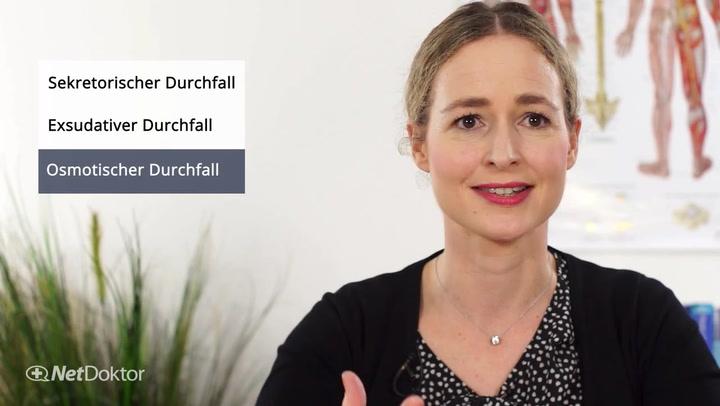 Bauchspeicheldrüse: Aufbau und Funktion - NetDoktor