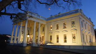 Woman tries to jump White House fence and ends up dangling from her shoelaces