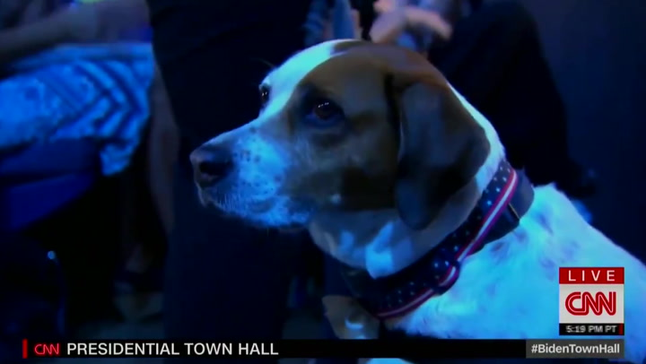 Biden jokes with Republican: Your dog is a democrat, I can tell