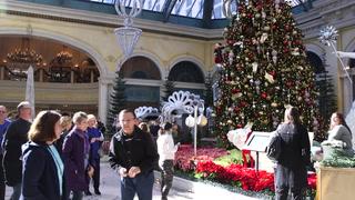 Bellagio Conservatory debuts 2017 holiday display