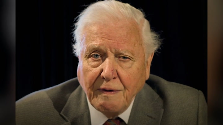 Attenborough addresses world leaders as G7 summit draws to close