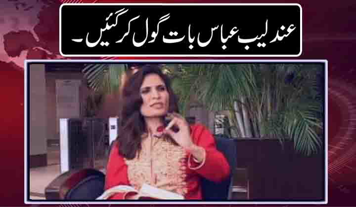 Andleeb Abbas answers on as PM fame scale height after Panama verdict??