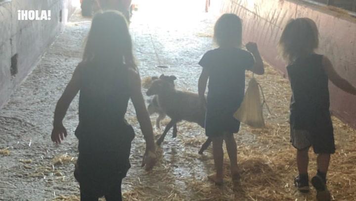 ¡Animales, deporte y diversión! La escapada familiar de Elsa Pataky a España