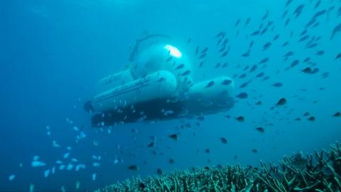 Uber lanza viajes en submarino en la Gran Barrera de Coral