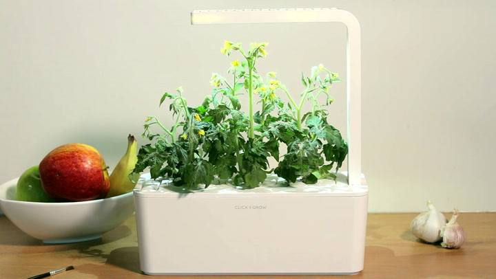 Preview image of Click & Grow Smart Garden - Pollinating video