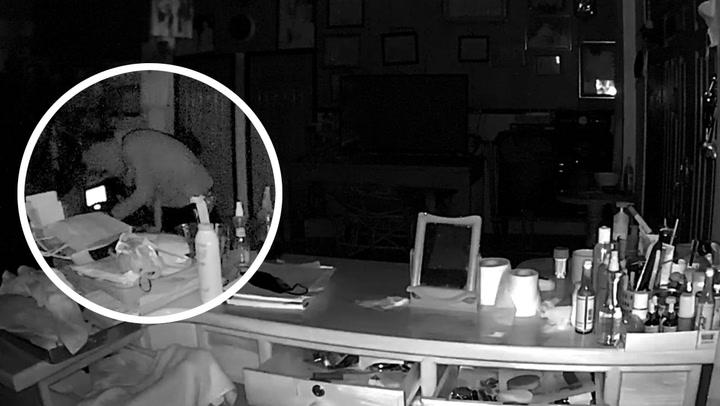วงจรปิดจับภาพ 3 โจรงัดบ้านขโมยรถจักรยานยนต์ถึงหน้าห้องนอน