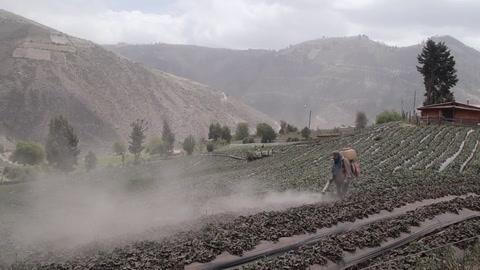 Lluvia de ceniza volcánica continúa afectando a pobladores en Ecuador