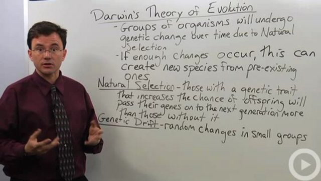 Darwins Theory of Evolution