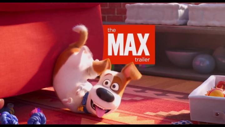Max The Secret Life Of Pets Wiki Fandom
