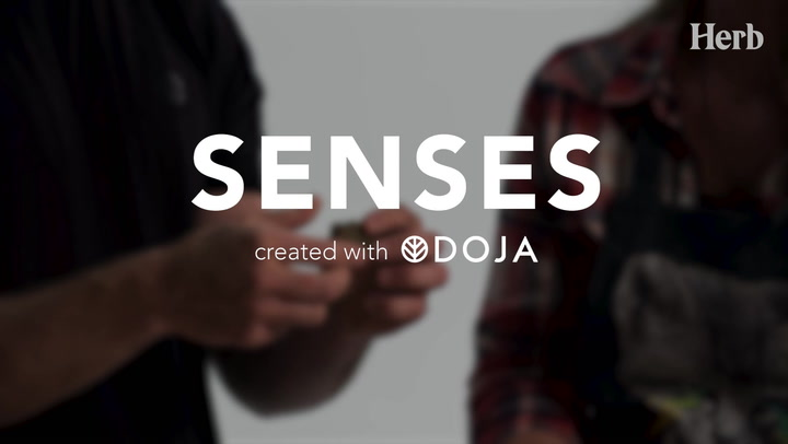 DOJA | Senses - Episode 5. Wrap Up
