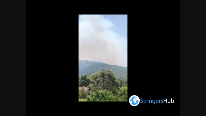 'Out of control' wildfires break out in Greece as villagers are in Peloponnese forests