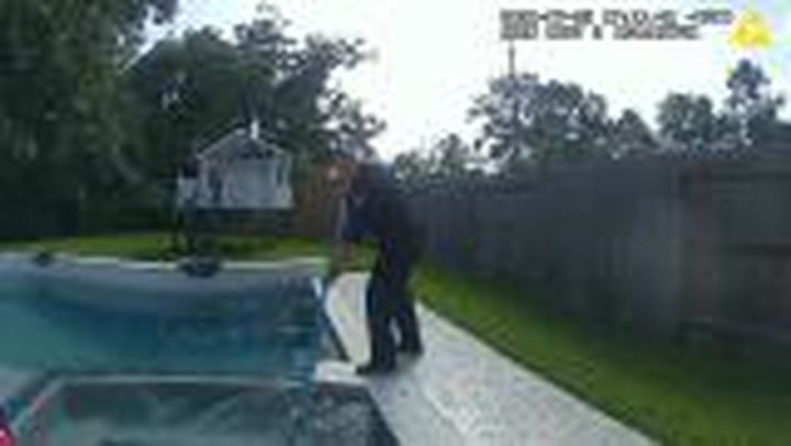 Alligator found in hot tub was 'taken into custody' by police