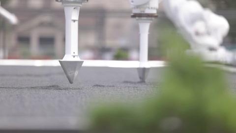 Deportistas olímpicos inspiran jardín zen en Tokio