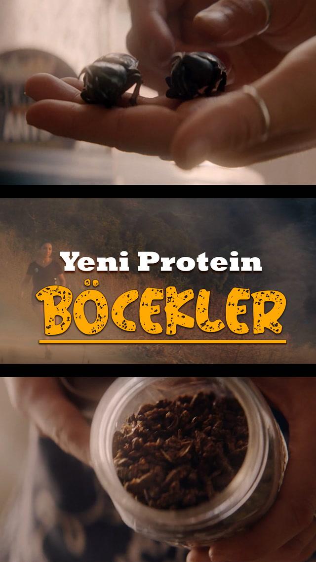 Sporcuların yeni proteini, böcekler