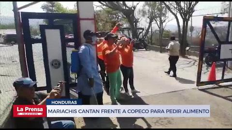 Mariachis cantan frente a Copeco para pedir alimento en medio de la cuarentena