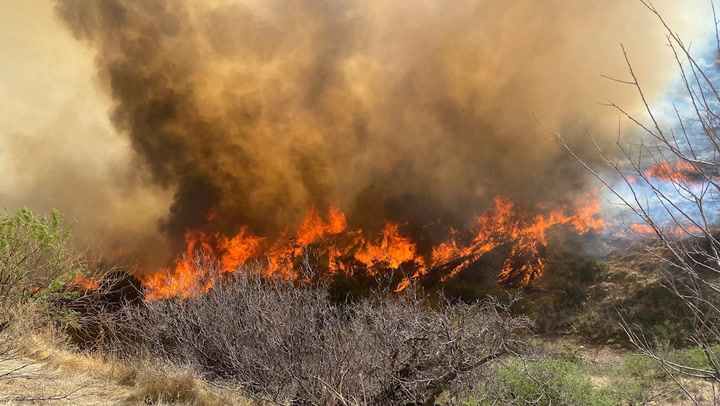 Wildfire rages amid dry, windy conditions in Arizona