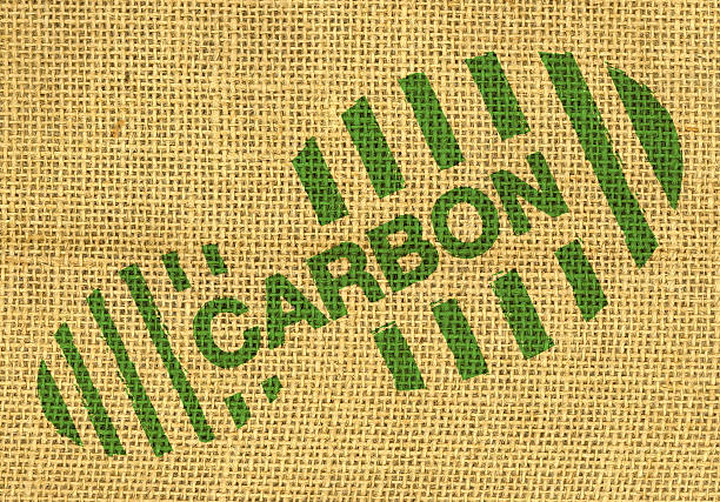 Half of adults don't know what 'carbon footprint' means, study finds