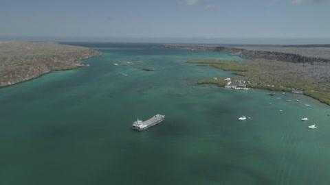 Adaptarse para sobrevivir: ciencia y turismo tras los pasos de Darwin en Galápagos
