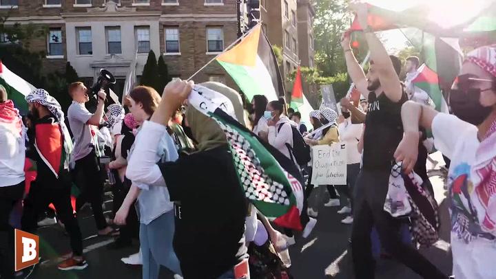 Pro-Palestinian Activists: