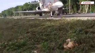 Avioneta se desploma en pleno tramo carretero en el sur de Quintana Roo