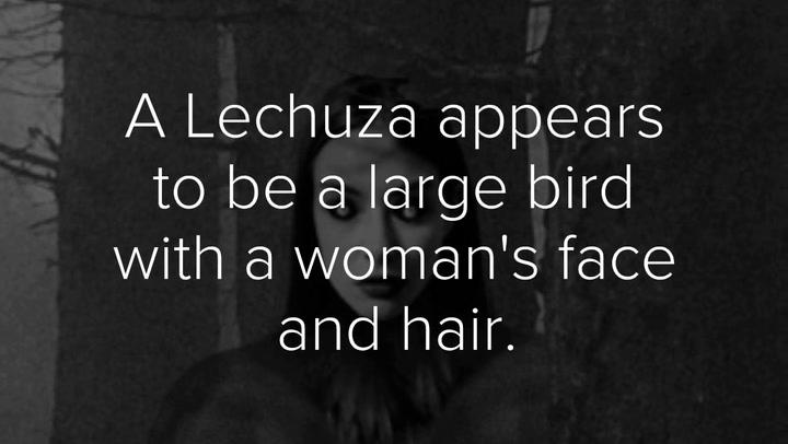 The Lechuza...