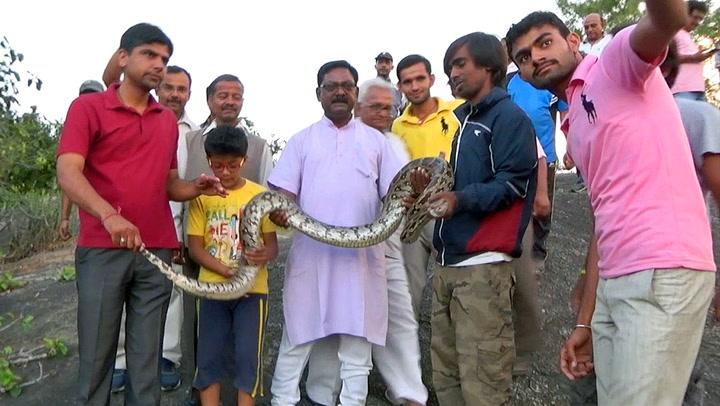 Poserer med slangen – så får den nok