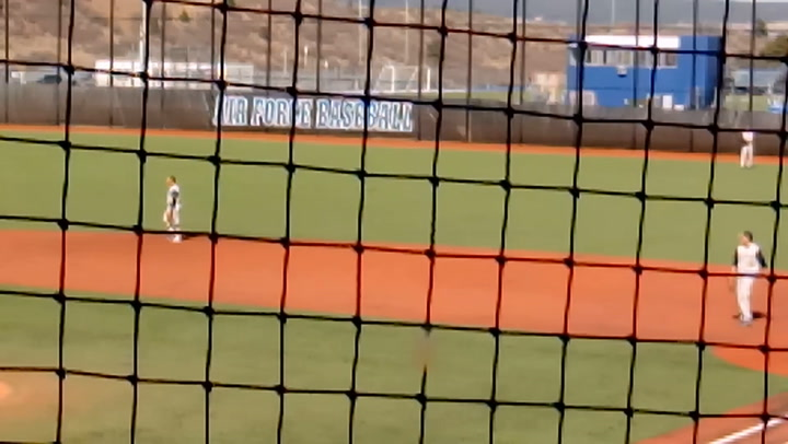 An unexpected visitor added some entertainment to Air Force's baseball game against Colorado Christian