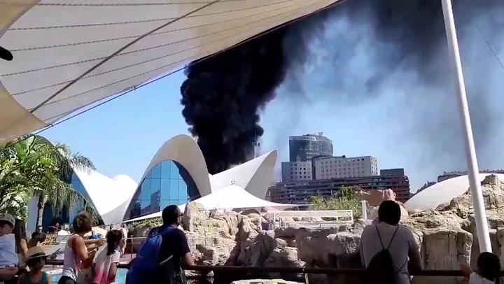 El impactante incendio que ha afectado al Oceanogràfic de Valencia