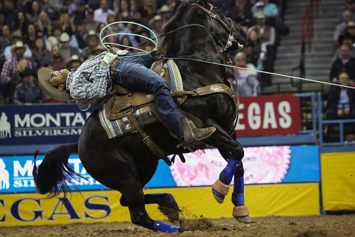 Nfr 2018 Round 10 Highlights Las Vegas Review Journal