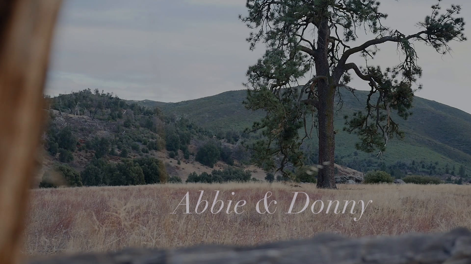 Abbie  + Donny | Julian, California | Cuyamaca Mountains