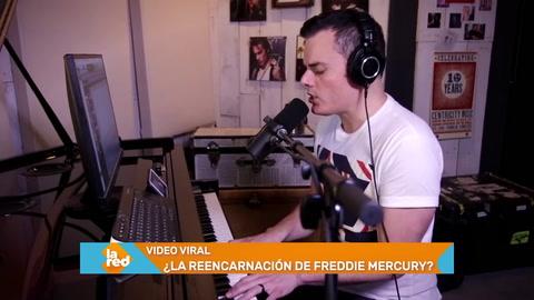 Se hace viral la reencarnación de Freddie Mercury