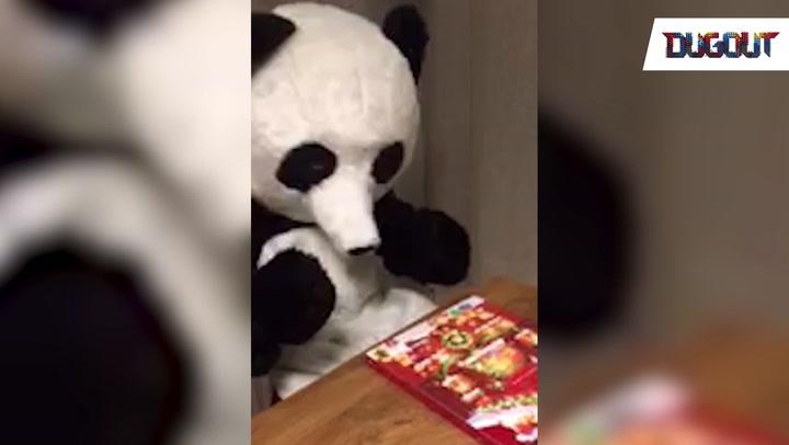 Evra Panda Calendar
