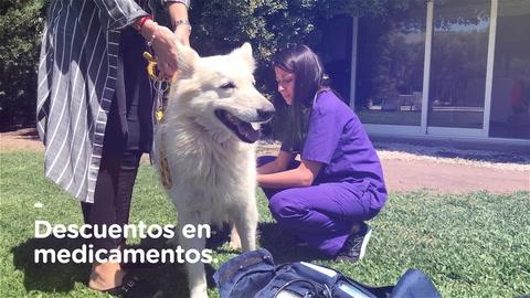Inauguró en Rosario un nuevo espacio para el bienestar de las mascotas