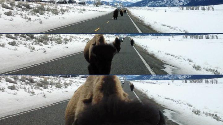 – Ikke løp inn i bilen min!