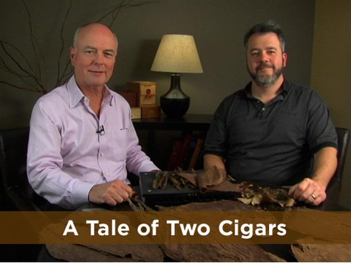 Cigar 101: Inside a Cigar