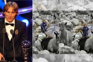 Luka Módric, el The Best que cuidaba cabras en una montaña llena de lobos
