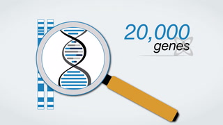 Personalized Medicine - Genetic Risk Score