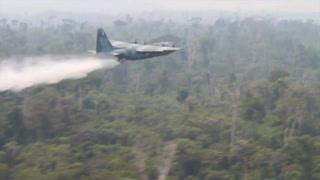 Fuerzas Armadas de Brasil inician combate a incendios en la Amazonía