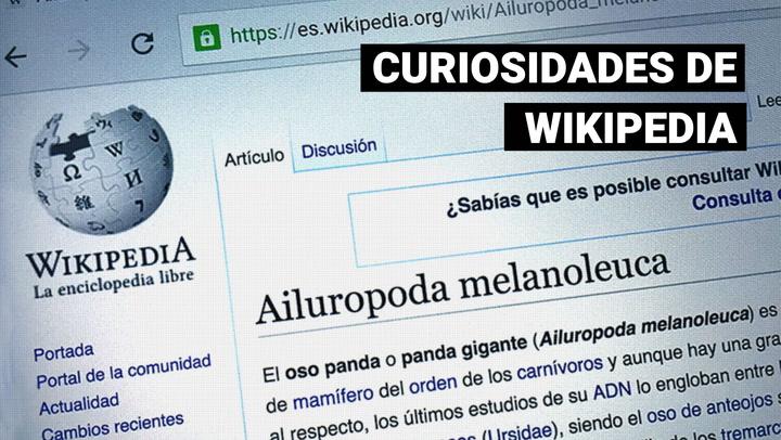 Curiosidades de Wikipedia, a propósito de sus 20 años de creación
