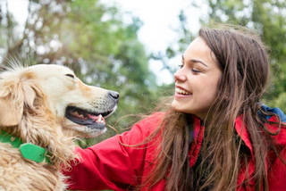 Experts explain why your pets aren't likely to transmit COVID-19 – VIDEO