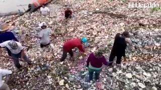 Biobarda retiene gran cantidad de basura desde Guatemala a Honduras