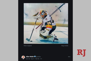 Marc-André Fleury comments on his agents twitter picture – VIDEO