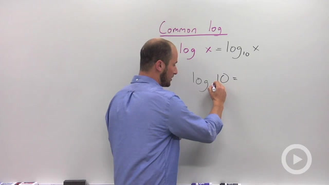 Common and Natural Logarithms