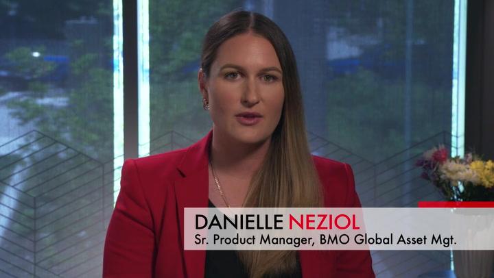 BMO ESG ETFs - Socially Responsible Investments