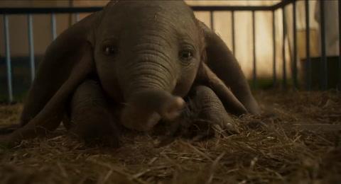 Estrenos de cine en Honduras: Dumbo