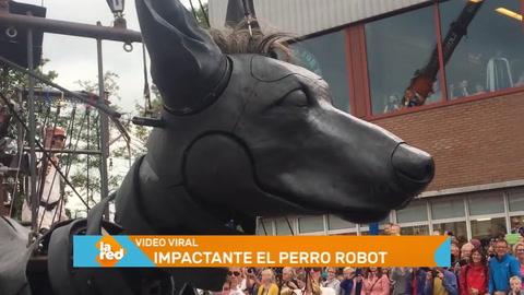 Videos virales: Perro robot sorprende en las redes sociales