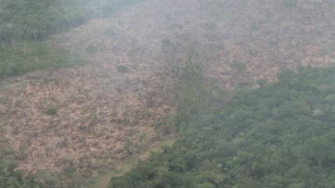 Colombia anuncia ofensiva militar contra expansión del narco en parques naturales